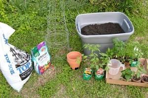 Miért jó a kén a növényeknek?