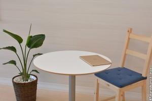 Miért kell az irodánkba növény?