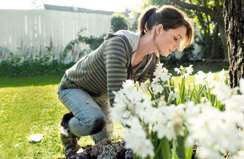 virágágyás gondozása
