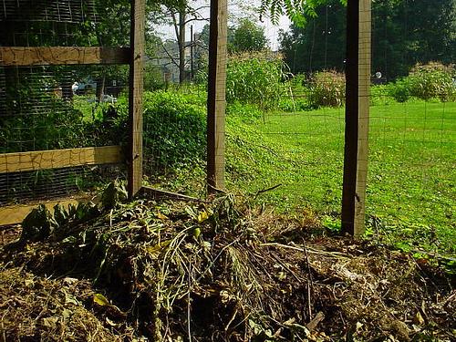 Komposzt - Fekete arany a kerti talajhoz