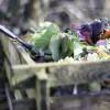 Hogyan készítsünk komposztot?