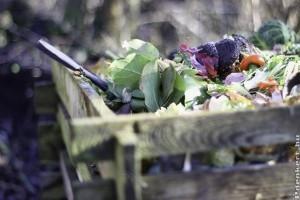Hogyan készítsünk komposztot? Mivel gyorsíthatjuk a komposzt érését?