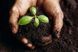 Komposztálás – otthon és közösségben 5 lépésben