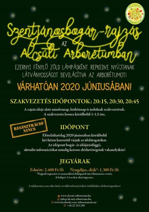szentjanosbogar_rajzas_2020_alcsutdoboz