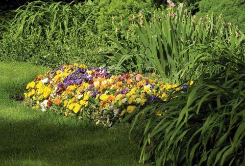 virágágyás a kertben