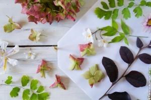 Készítsünk ajándékot préselt virágokból!