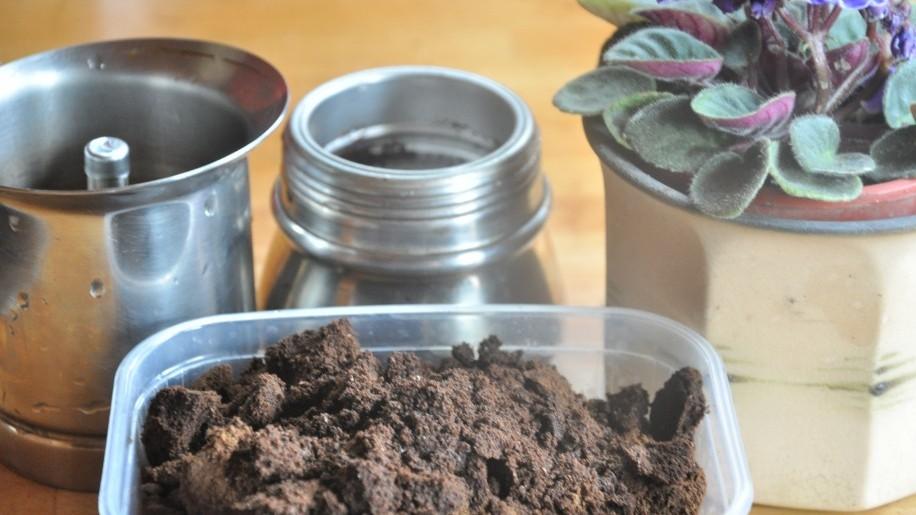 Ne dobjuk el a kávézaccot, hasznosítsuk kertünkben!