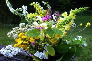 Hogyan készítsünk el egy szép virágcsokrot?