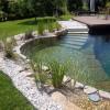 Ismerjük meg a biomedence és fürdőtó előnyeit! Miben különböznek a hagyományos medencéktől?