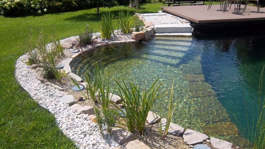 Biomedence, fürdőtó vagy hagyományos medence?