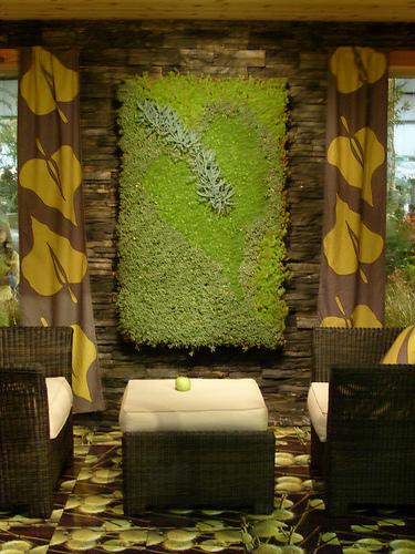szobai zöld
