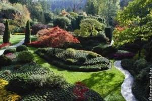 Átalakítaná a kertjét?- Tippek új növények választásához