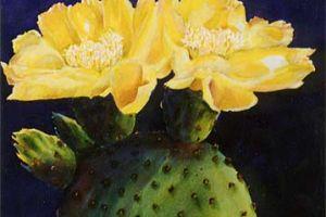 Melegben is díszesen: az Opuntia kaktusz