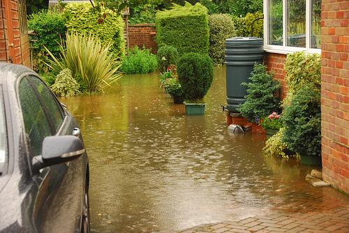 árvíz a kertben