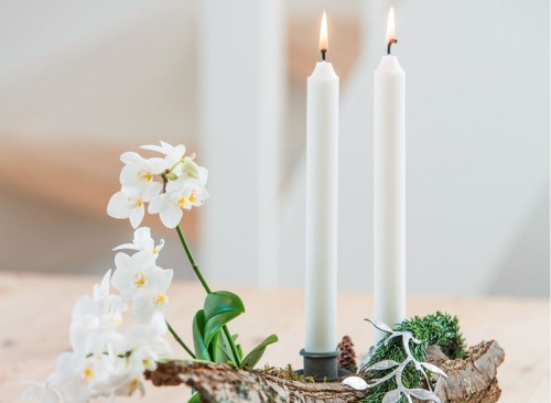 orchidea_advent4