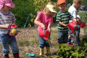 Hogyan építsünk pizza-kertet, pillangó-kertet a gyermekünknek?