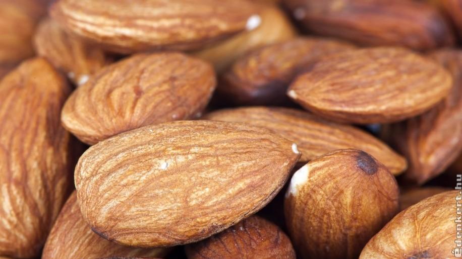 hogyan fogyasszunk mandulát fogyáshoz