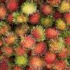 Egzotikus déli gyümölcsök, amelyeket érdemes megkóstolni