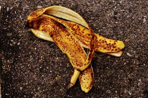 banana-peel-1735083_640