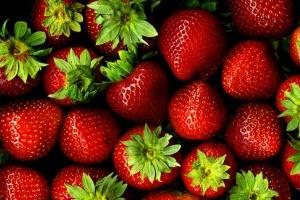 Hogyan termesszünk bio földiepret? - 1. rész