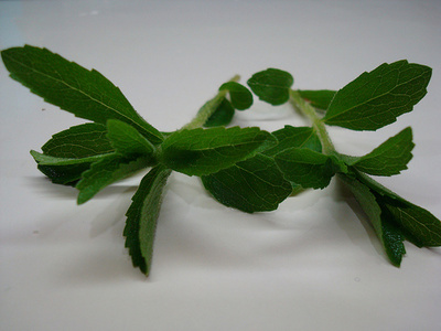 Sztívia-levelek