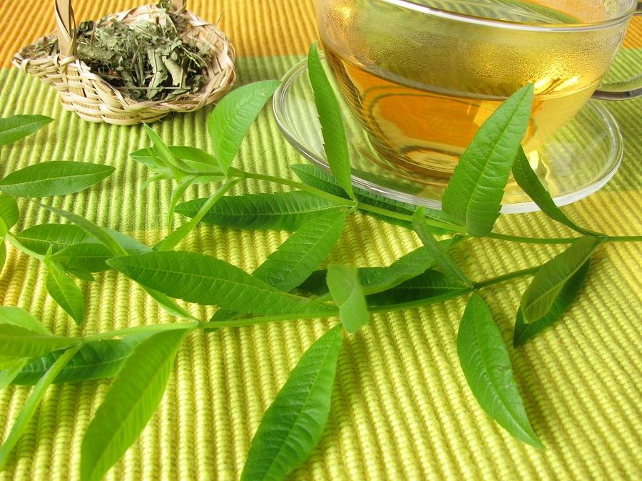 citromverbena_tea