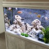 Feng Shui akváriumok