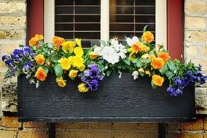 Konténerkertészet - virágoskert az ablakban!