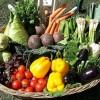 Együnk sok zöldséget és gyümölcsöt!