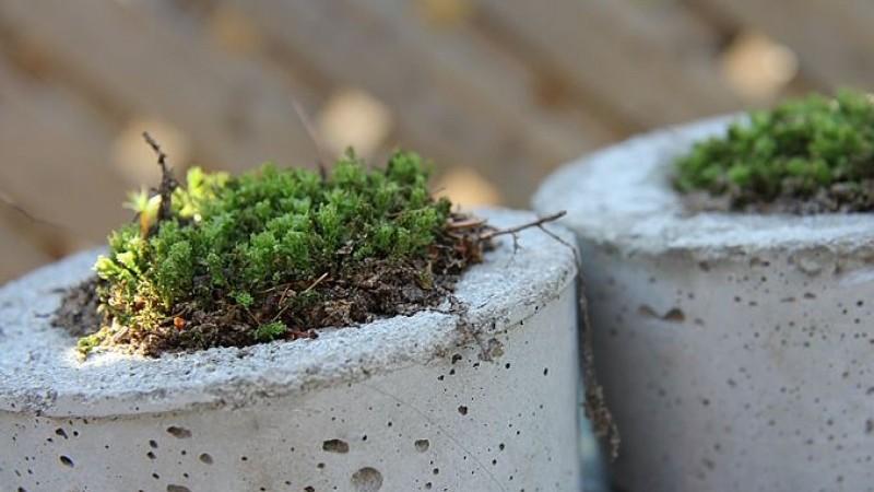 Mi mindenre jó a tőzegbeton? Virágtartó DIY