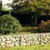 Hogyan tegyük kertünk díszévé a kerítést?