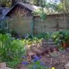 Rovarirtó nélkül a lakásban és a kertben!