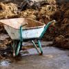 A kert komposztálása és trágyázása - 3. rész