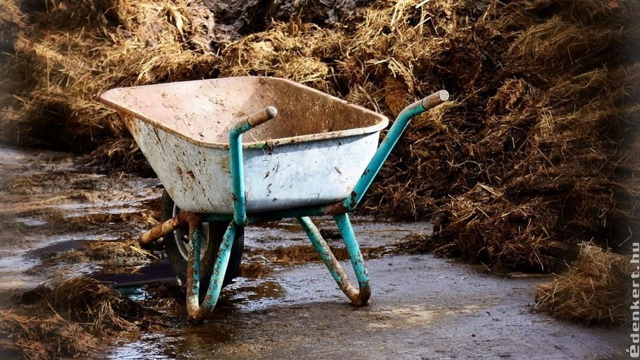 Mikor, milyen trágyát használjunk a kertben?