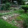 Tervezzük meg a saját kertünket! - 1. rész