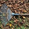 Ősz - Aktuális kerti teendők