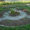 Kör alakú zöldségeskert