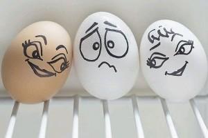 Mi lesz a tojással? - XII. Tojás Világnap