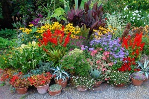 Alakítsunk ki könnyen átrendezhető kerteket! - 2. rész