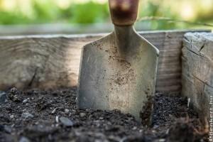 Tavasszal vagy ősszel komposztáljuk a talajt?