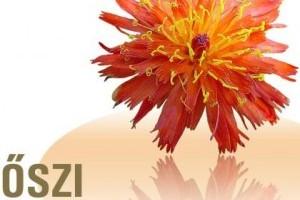 Végre itt az Őszi Kertészeti Napok 2010!