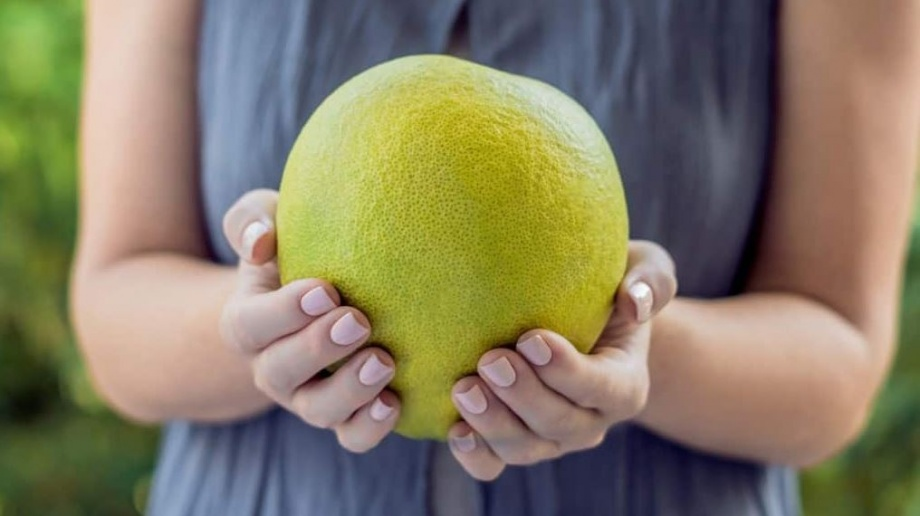 pomelo_legnagyobb_citrusfele