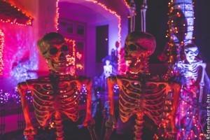 Legyen Halloween a kertben is!