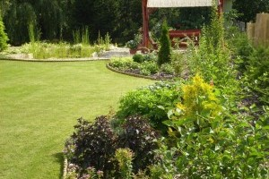 Kertészeti tanácsok őszre