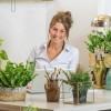 Légtisztító növényekkel tisztítsuk otthonunk levegőjét