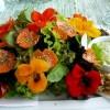 Ehető vadnövényekből készült ételek