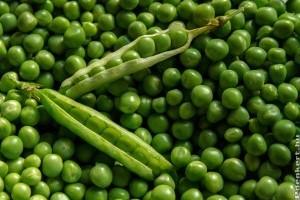 Amit a zöldborsóról tudnunk kell!