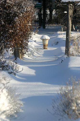 téli-sövény-kert-decemberben
