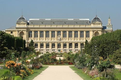 parizsi-fuveszkert