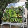 Függőleges kertészeti ötletek